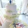 カスミソウのケーキとリングピロー完成の画像