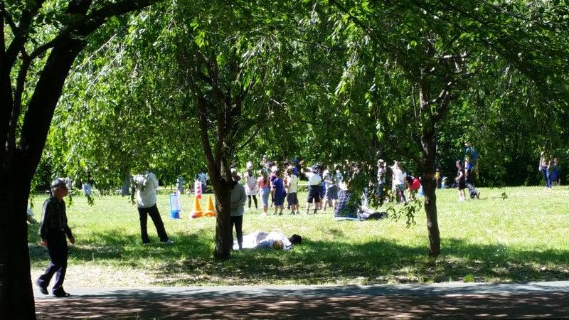 09 公園の様子