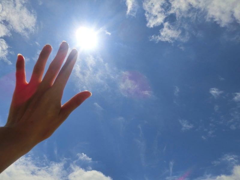 「太陽 UVカット」の画像検索結果