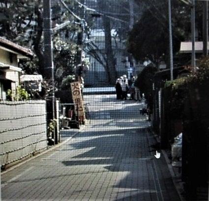 統監道と大磯宿 | 風遊花(ふう...