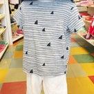 BNT★おすすめTシャツの記事より