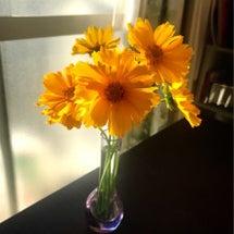 温かいお花のリレーア…
