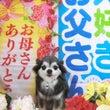 5月24日のお客様(…