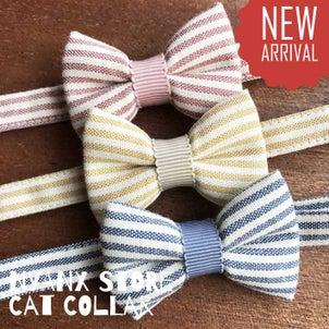 夏におすすめ♡ストライプリボンの猫首輪の画像