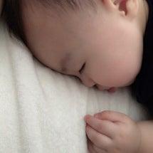赤ちゃんおちびーぬが…
