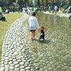 ♪大阪市民の憩いの場の画像