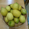 小豆島産無農薬レモンの画像