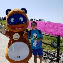 茶臼山高原 芝桜の丘…