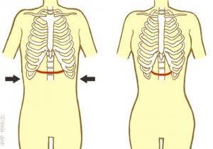締め 方 肋骨