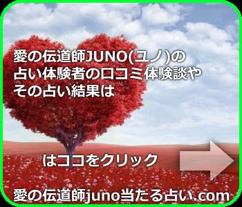 愛の伝道師JUNO(ユノ)の占いの口コミや評判をまとめたサイト
