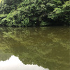 釣りの話11 野村バス釣りの画像
