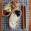 最近の塾弁、お弁当まとめ。ひじき多めの地味弁いろいろーの画像