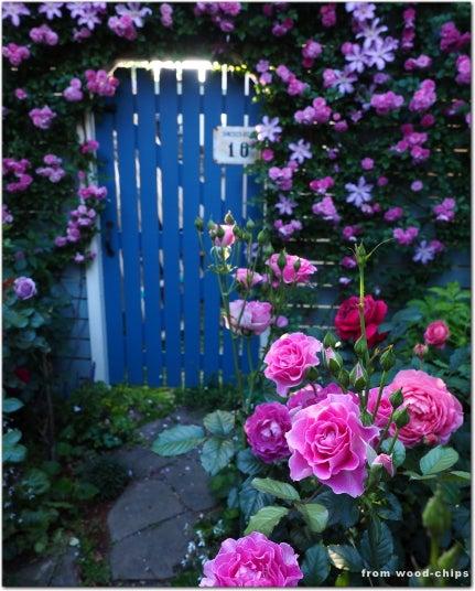 ガーデンゲート バラ