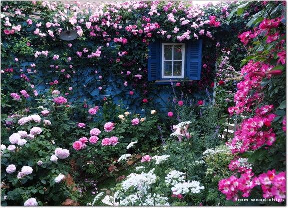ウッドチップス ガーデン
