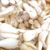 旬の野菜『らっきょう』の画像