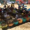 泥んこ遊び⭐️楽しいー!の画像