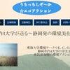 静岡市内4大学・静岡発の環境美化イベント うちっちしぞ~か☆エコアクショ9/9~9/30の画像