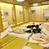 愛媛遠征12の画像