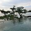 想い出深い?熱海の温泉に浸かる一日目の画像