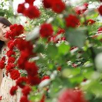 【2期募集中 福岡(2/7) / 熊本(2/10)】かわいい女たちが生きる輝く地の記事に添付されている画像