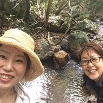 自然deごはん 〜屋久島を感じる渥美半島の森で自然観察&森ランチ〜 9月に開催しの記事に添付されている画像