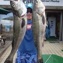 SUP で釣りをしよう!三浦海岸FiNeへ 道具や必要な物 【注意事項】 の記事に添付されている画像