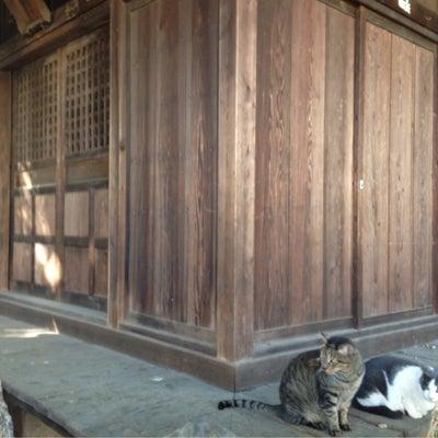20、自宅から1番近い神社は頻繁に参拝しましょうの記事に添付されている画像