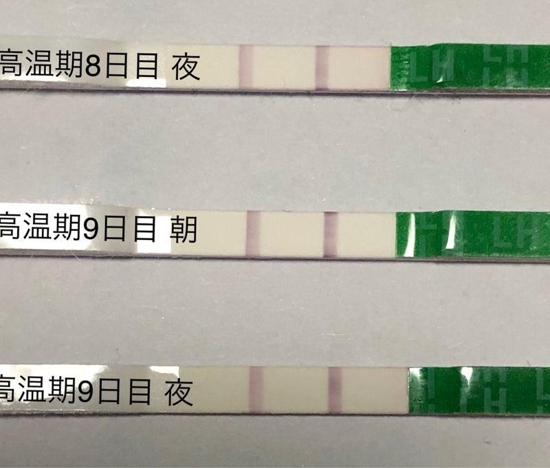 排卵検査薬 高温期9日目