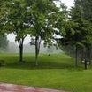 雨の日のゴルフを快適にプレイするポイントとは?!