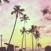 ☆ハワイで国際離婚:裁判とバースデー☆