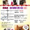 次回は7月1日(日)猫の未来とびら譲渡会@東銀座♪開催します!