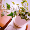 植物と東京お気に入りスポット♡れいの画像