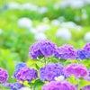 ✳️6/22(金)〜6/24(日)♡出勤情報・6・7月限定イベントのの画像