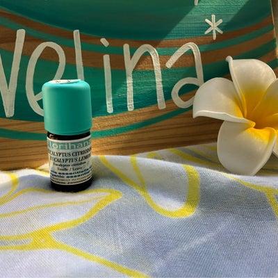 花粉症にアロマ!!の記事に添付されている画像