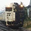 番外 JR指宿枕崎線、「指宿のたまて箱」の前に運行されていた、快速列車「なのはなDX」のご紹介