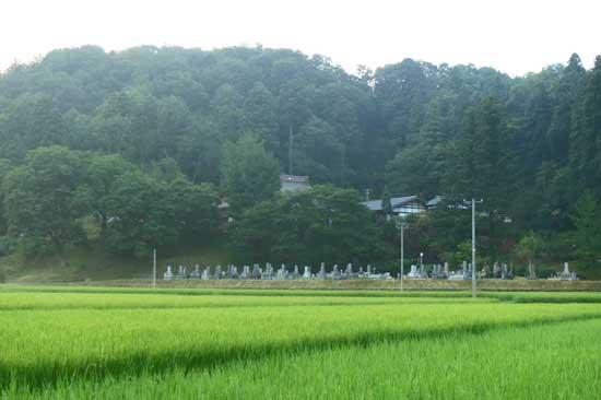【写3】大葉沢城