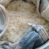 米麹を増やしてみたの画像