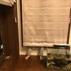 お風呂の窓位置、今さら後悔の画像