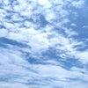 家族団らんでのテーマ『希望のお葬式』 希望の樹 栃木 の画像