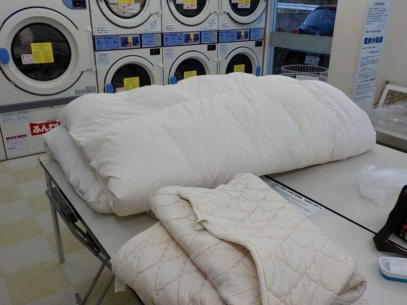 羽毛 布団 洗濯 機