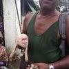 ▼唸声ミャンマー写真/ヤンゴンの猿面豚の画像