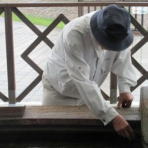 鹿児島水族館へ♪の画像