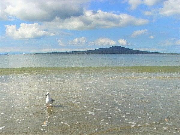 ニュージーランドのタカプナビーチ
