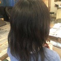 スカスカ髪をカットしてから三カ月の記事に添付されている画像