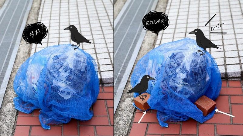 カラス よ け ゴミ箱