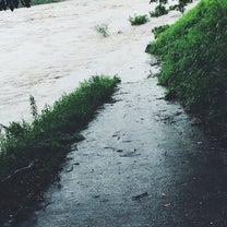 数十年に一度の大雨とパパの散歩道の記事に添付されている画像