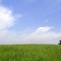 健康と空気の因果関係が分かった!?その④ 自然素材自由設計の家 スカイグラウンドの記事に添付されている画像