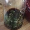 長期保存可能な紫蘇の醤油漬けの画像