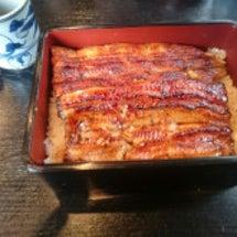 鰻食べました