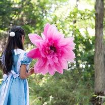 【撮影会・開催!】7/23(月) 木漏れ日のビックフラワー撮影会♡の記事に添付されている画像